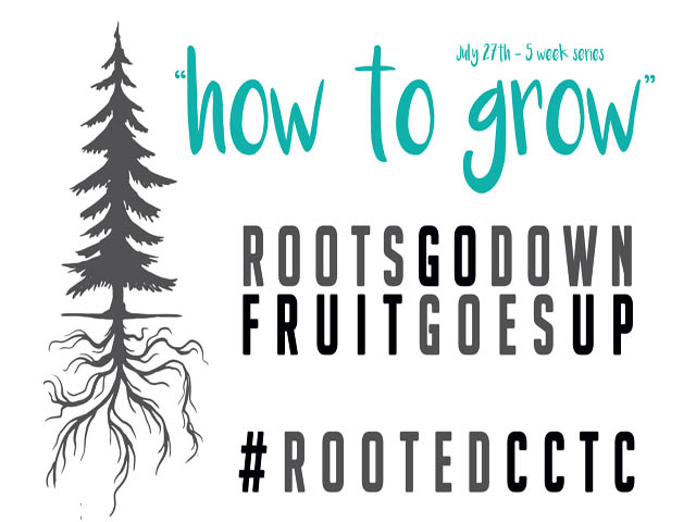 Rooted New Series