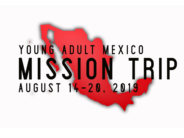 Young Adult Mexico Mission